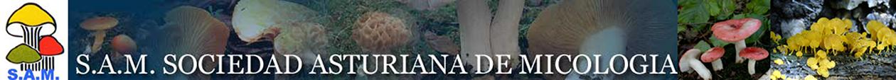Página de inicio de la Sociedad Asturiana de Micología